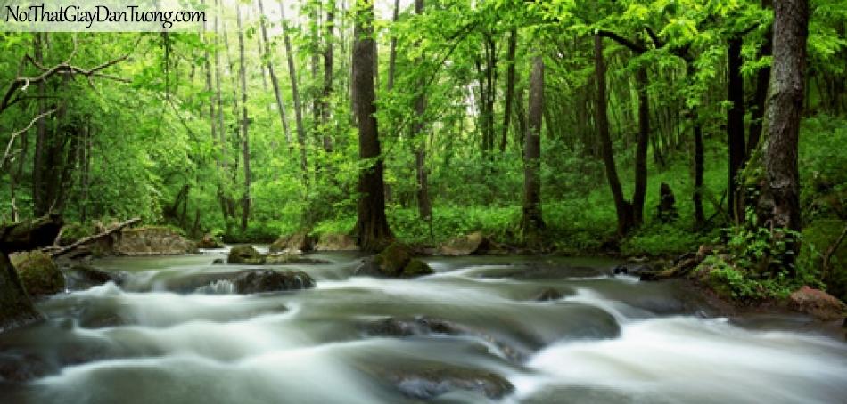 Tranh dán tường, vẻ đẹp của thác nước trong rừng xanh DA3102