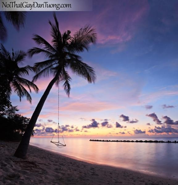 Tranh dán tường, Bờ biển cây dừa, bầu trời hoàng hôn xuống DA0495