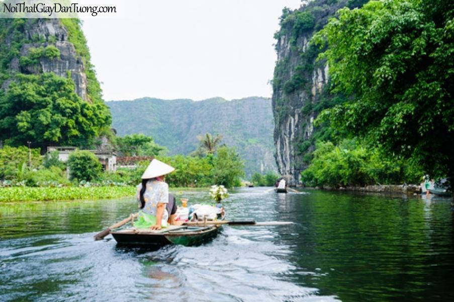 Tranh dán tường mau xanh cả nước, núi dá cỏ cây DA0496