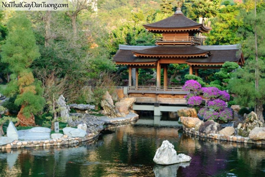 Tranh dán tường, Các gian hàng đông của sự hoàn hảo tuyệt đối trong Nan Lian Garden, Chí Lin Ni viện, Hồng Kông DA0521