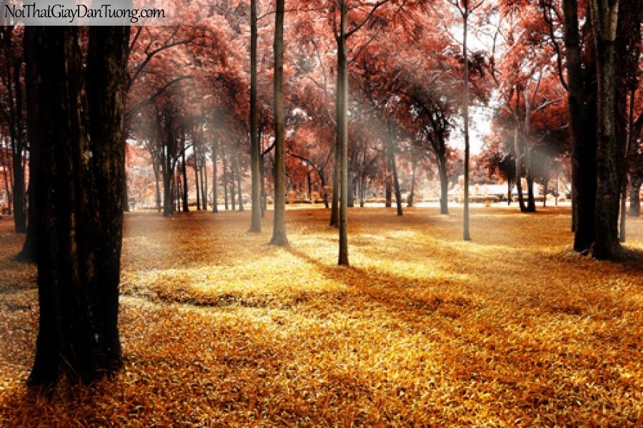 Tranh dán tường, cỏ cây cẩu công viên DA0512