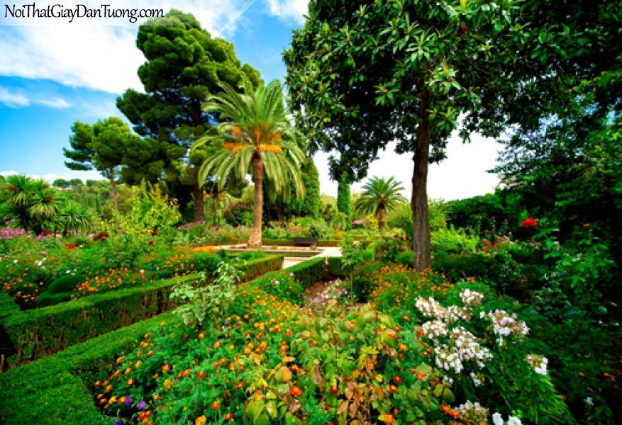 Tranh dán tường, hàng cây xanh và những bông hoa DA0551
