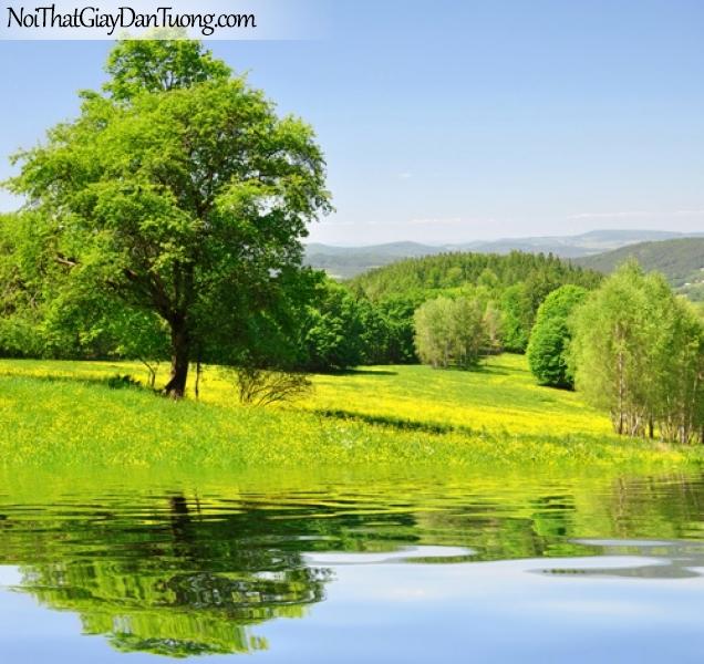 Tranh dán tường, hồ nước và đồi cỏ và cây xanh DA0543