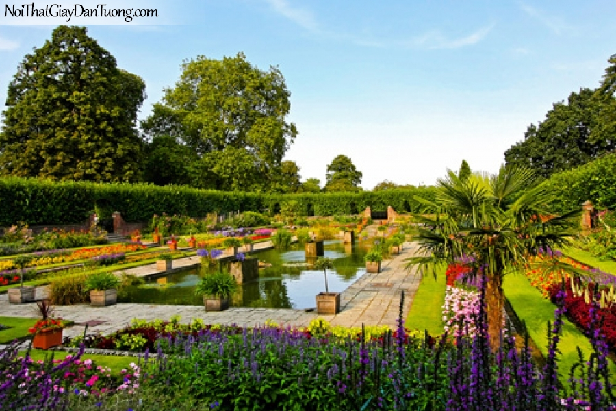 Tranh dán tường, một rừng hoa tuyệt đẹp có hàng cây xanh và hồ nước DA0549