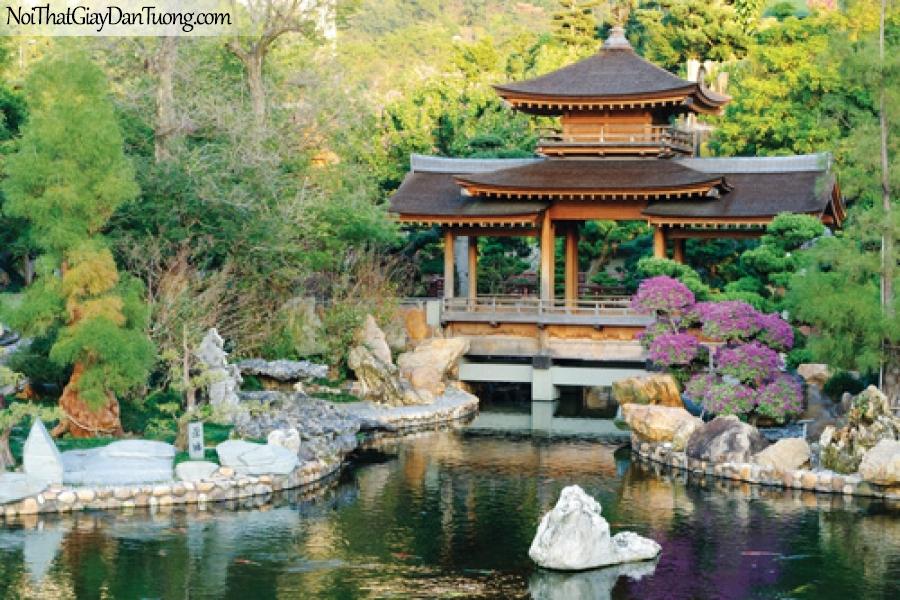 Tranh dán tường, ngôi chùa và hồ nước bình yên trong rừng DA0541