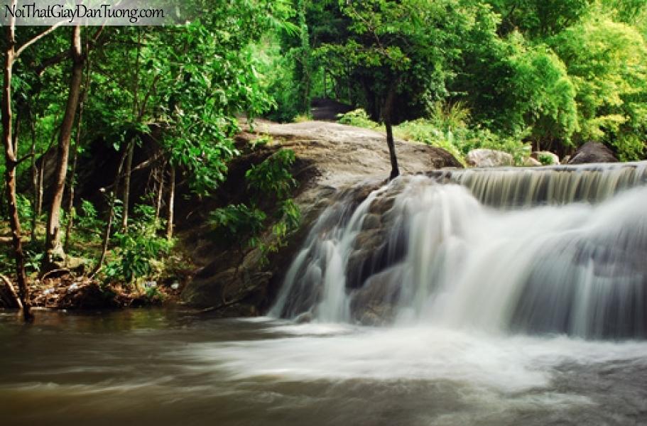 Tranh dán tường, thác nước chảy êm đềm giữa rừng cây xanh DA3126