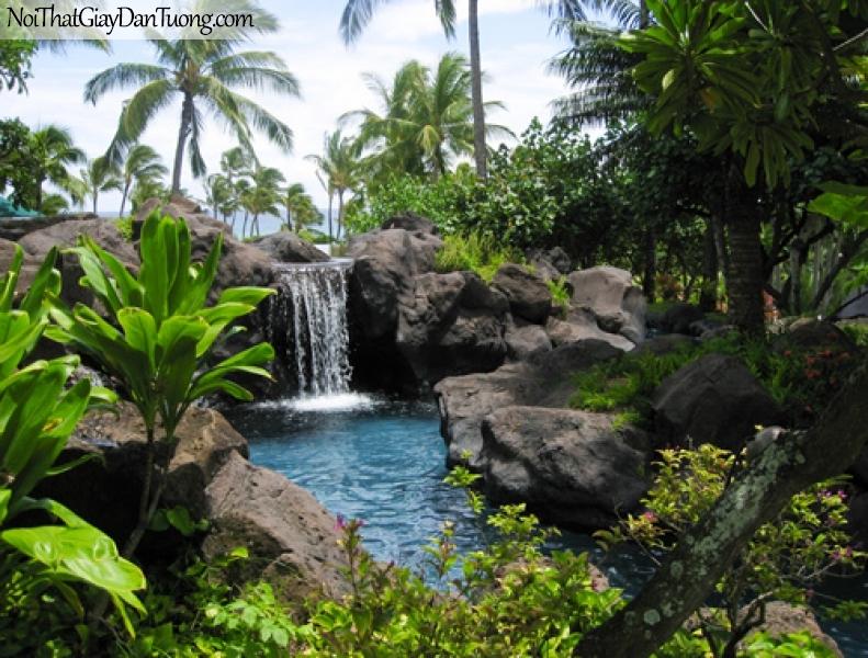 Tranh dán tường, thác nước chảy trên những mỏm đá giữa những hàng dừa xanh DA3135