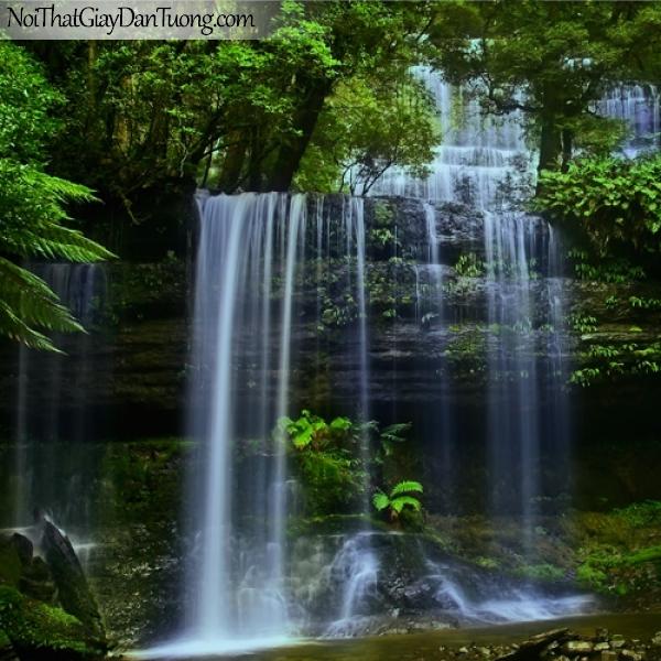 Tranh dán tường, thác nước hùng vĩ chảy giữa rừng cây cổ thụ qua từng bậc đá DA3114