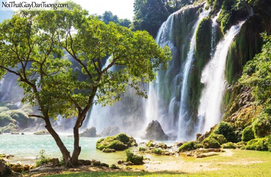 Tranh dán tường, vẻ đẹp hùng vĩ của thác nước chảy từ trên ngọn núi cao xuống đằng sau cây cổ thụ DA3138