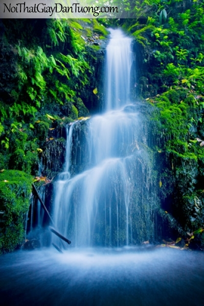 Tranh dán tường, vẻ đẹp mê hồn của thác của nước chảy từ rừng xanh DA3108