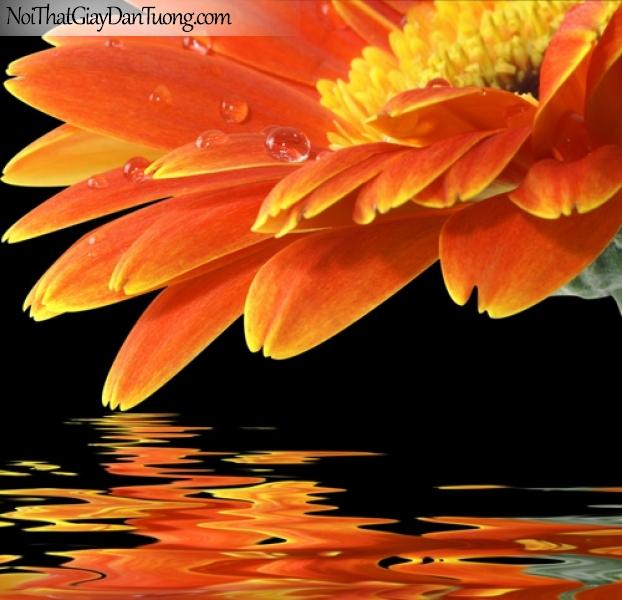 Tranh dán tường , bồng hoa màu vàng nâu và hồ nước DA2072