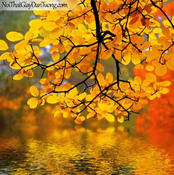 Tranh dán tường , một cánh cây là màu vàng và hồ nước DA2058