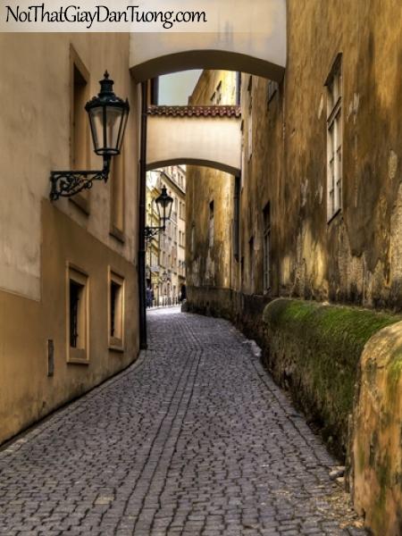 Tranh dán tường, con đường trải dài giữa góc phố cổ kính DA7028