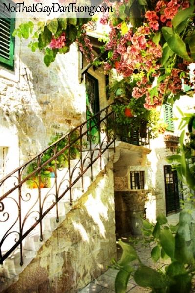 Tranh dán tường, góc phố cổ với chiếc cầu thang và những chành hoa màu đỏ DA7022