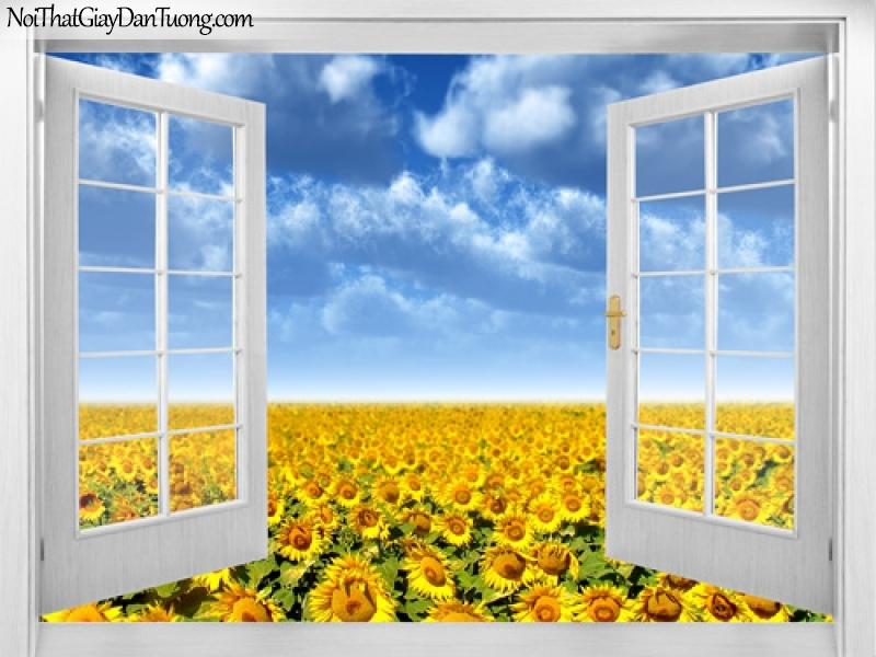 Tranh dán tường, cửa sổ mở ra với bầu trời xanh và bạt ngàn hoa hướng dương màu vàng 3D0012