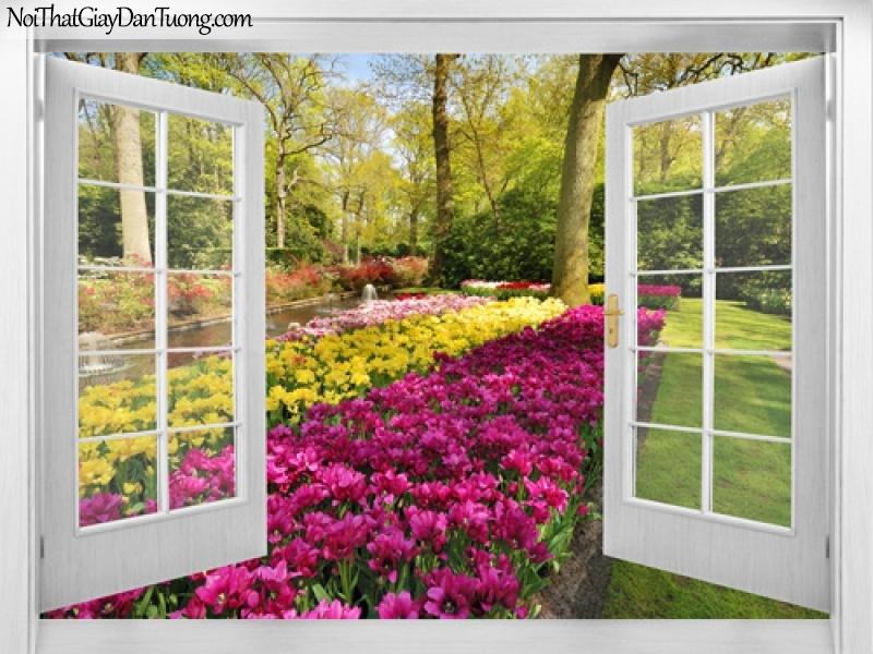 Tranh dán tường, những bông hoa khoe sắc bên cửa sổ nhà bạn 3D0028