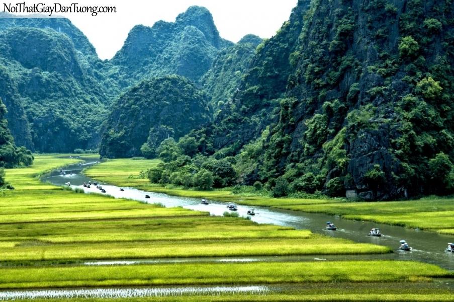 Tranh dán tường , những ngọn núi cao và cảnh đồng ruộng DA0580