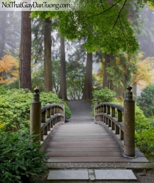 Tranh dán tường ,hàng cây xanh và con câu nhỏ DA0617
