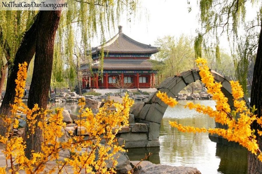 Tranh dán tường , ngắm cảnh hồ nước và ngôi chúa DA0599