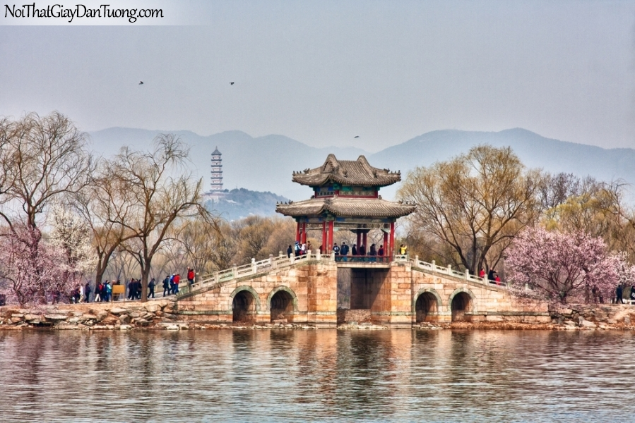 Tranh dán tường , ngắm cảnh hồ nước và ngôi đền DA0611