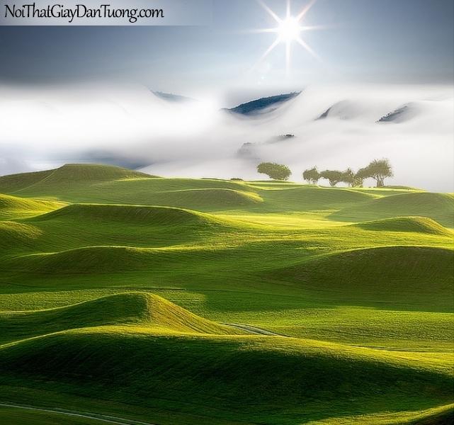 Tranh dán tường , ngắm cảnh đồi núi xanh xanh và bầu trời đám mây DA0626