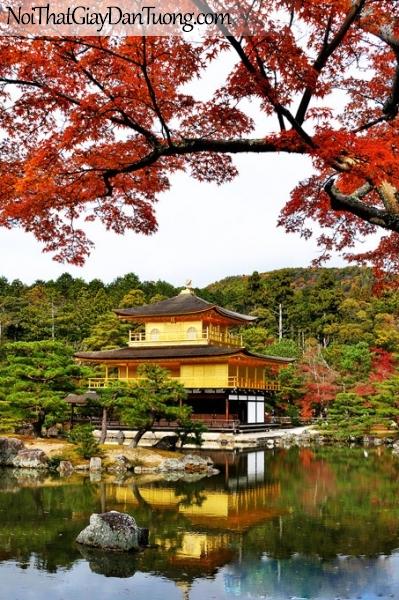 Tranh dán tường , ngôi đền và hồ nước cánh cây mùa thu là vàng DA0627
