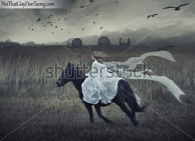 ranh dán tường | Bức tranh cô gái cưỡi ngựa trên đồng cỏ bao la rộng lớn DA062