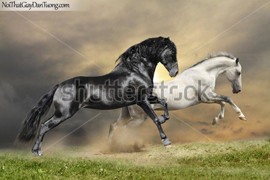 Tranh dán tường | Bức tranh 2 chú ngựa chạy trên thảo nguyên DA080