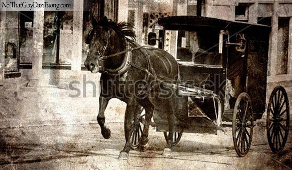 Tranh dán tường | Bức tranh chú ngựa kéo xe trong thành phố DA061