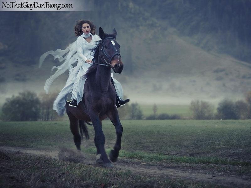 Tranh dán tường | Bức tranh cô gái cưỡi chú ngựa trên thảo nguyên bao la rộng lớn DA063