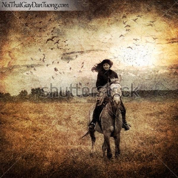 Tranh dán tường | Bức tranh cô gái cưỡi chú ngựa trên thảo nguyên giữa bầu trời chim DA077