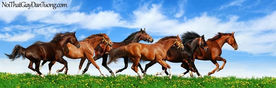 Tranh dán tường | Bức tranh những chú ngựa chạy trên thảo nguyên cỏ và hoa DA067