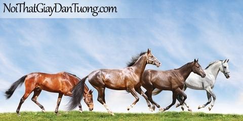 Tranh dán tường | Bức tranh những chúa ngựa chạy trên thảo nguyên rộng lớn DA066
