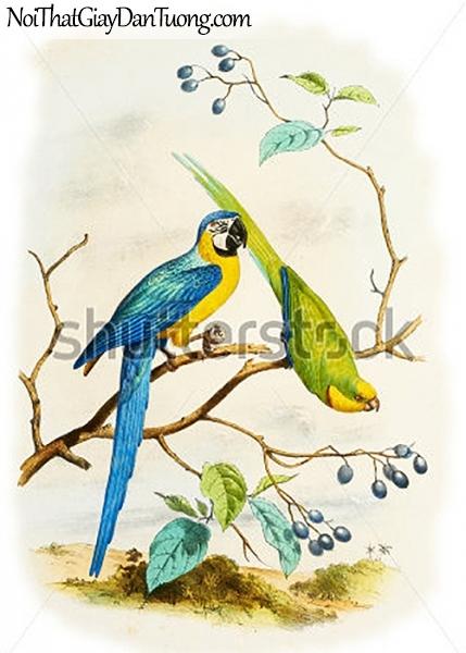 Tranh dán tường , đôi chim đậu trên cây DA303