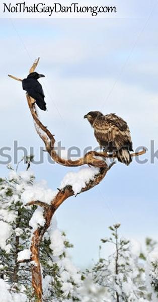 Tranh dán tường ,ngắm 2 chú chim đừng trên cánh cây DA316