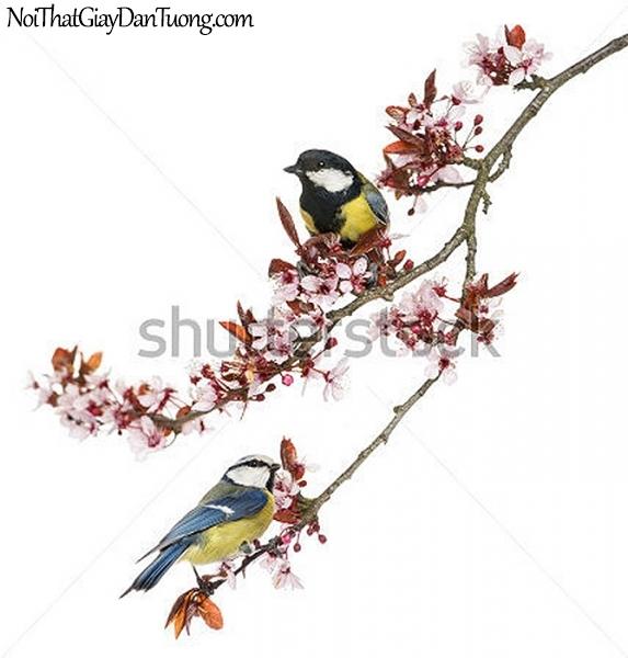 Tranh dán tường , ngắm cảnh đôi chim đậu trên cánh cây DA348