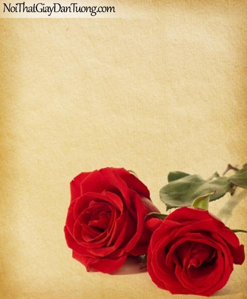 Tranh dán tường   Bức tranh 2 bông hoa hồng khoe vẻ đẹp riêng của mình DA2165