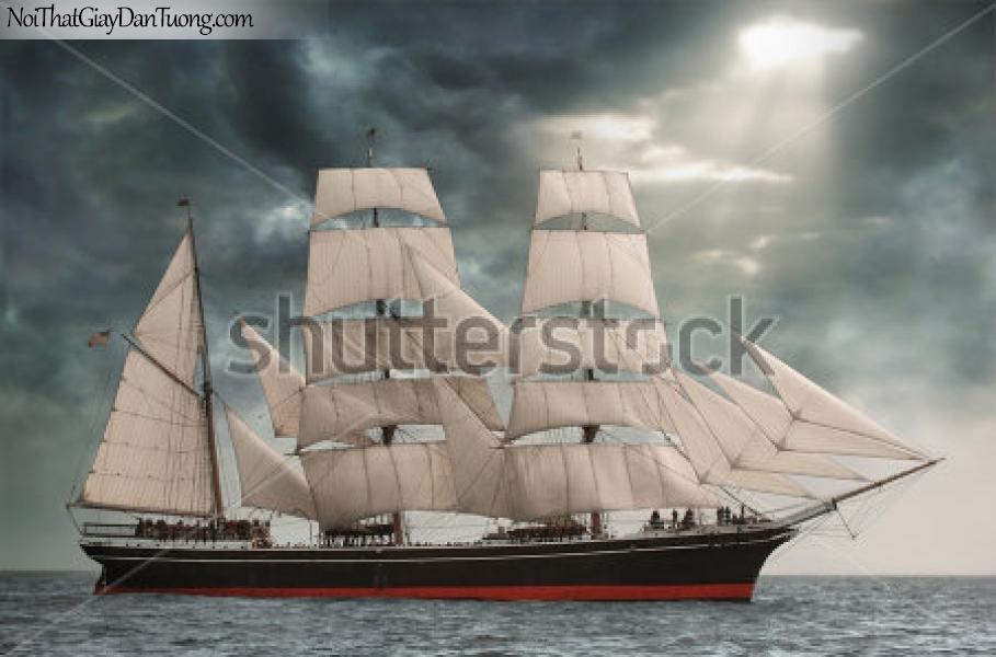 Tranh dán tường đẹp , thuyền buồm đẹp A003