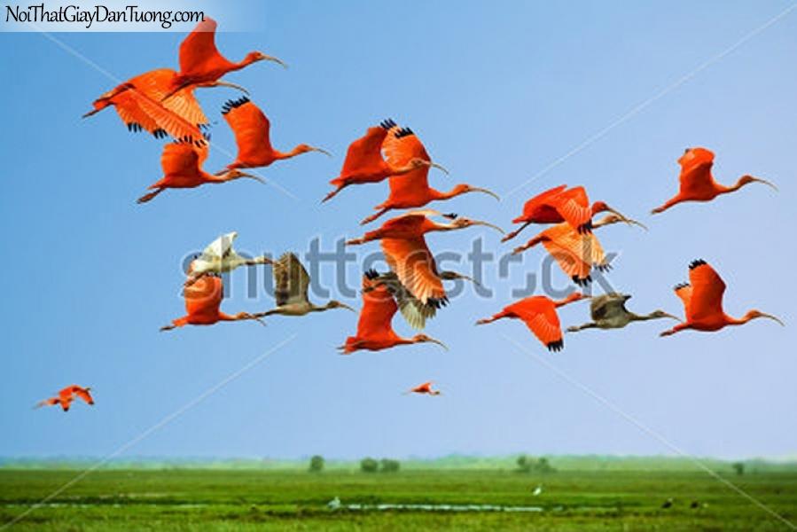 Tranh dán tường , ngắm đàn chim bay qua cánh đồng DA371