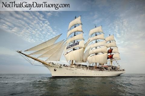Tranh dán tường , thuyền buồm du lịch đẹp A007