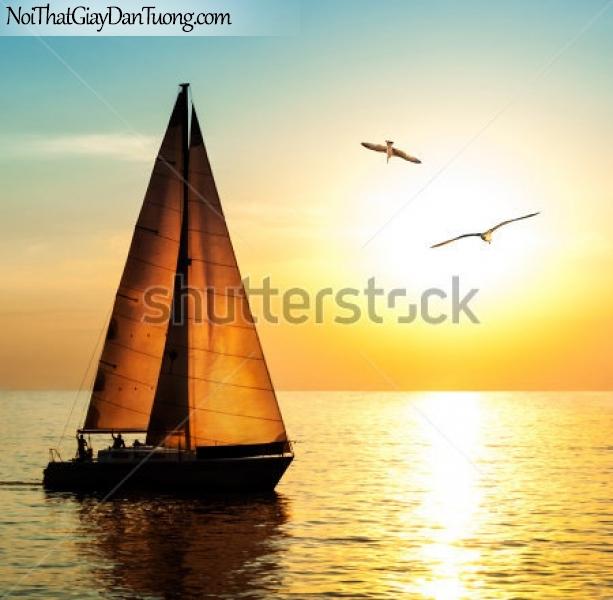 Tranh dán tường , thuyền buồm đẹp A011