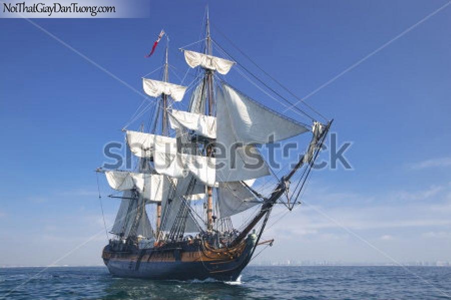 Tranh dán tường , thuyền buồm đẹp A024
