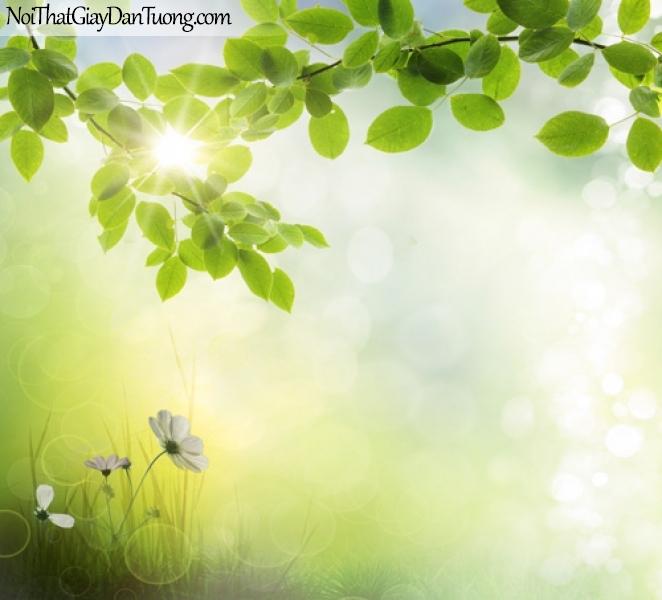Tranh dán tường | Bức tranh những chành lá xanh dưới ánh mặt trời DA2248