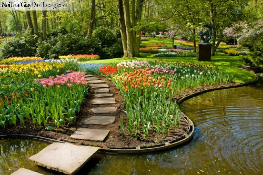 Tranh dán tường | Bức tranh những bông hoa xinh xắn bên con đường gần hồ nước đẹp DA2267