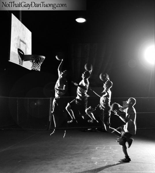 Tranh dán tường , bóng rổ là môn thể thao tăng chiều cao DA211