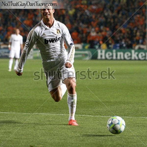 Tranh dán tường | Cristiano Ronaldo DA210