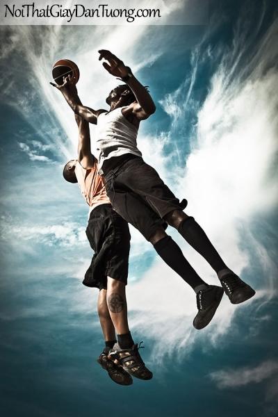 Tranh dán tường , môn bóng rổ DA214