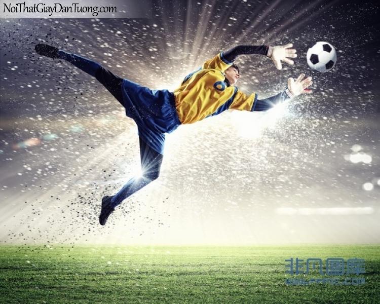 Tranh dán tường , nhìn thủ môn bay bắt bóng tuyệt đẹp DA226
