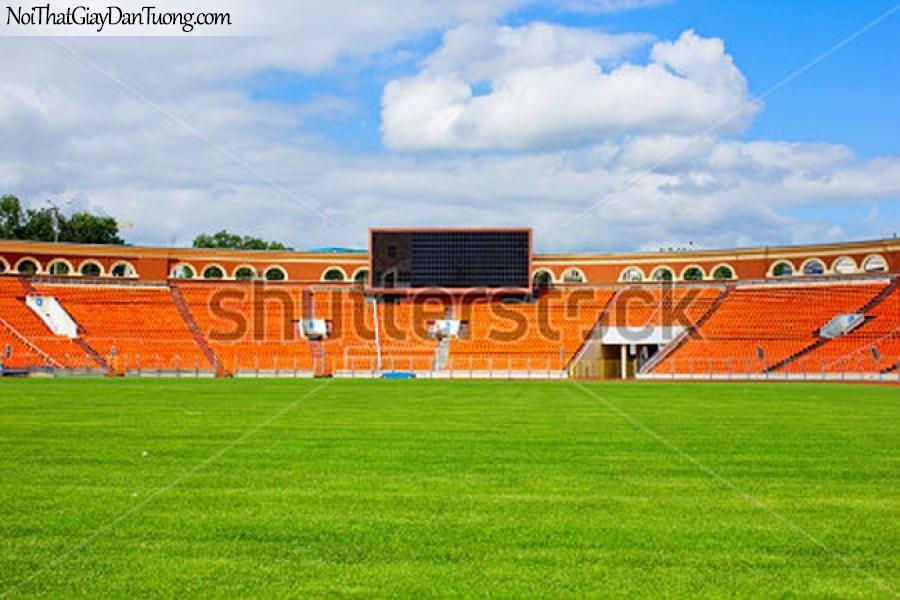 Tranh dán tường , sân chơi môn thể thao bóng ném DA215