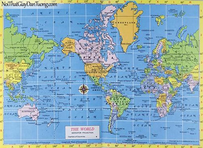 Tranh dán tường | Bản đồ thế giới DA706